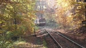 Zastávka Střelná v Krušných horách na podzim
