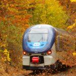 Regioshark na Moldavské železnici (autor: Libuše Vokatá)